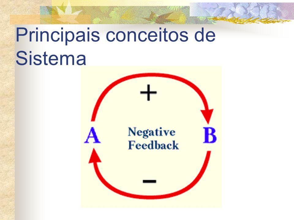 Principais conceitos de Sistema