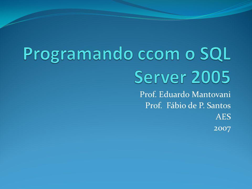 Prof. Eduardo Mantovani Prof. Fábio de P. Santos AES 2007