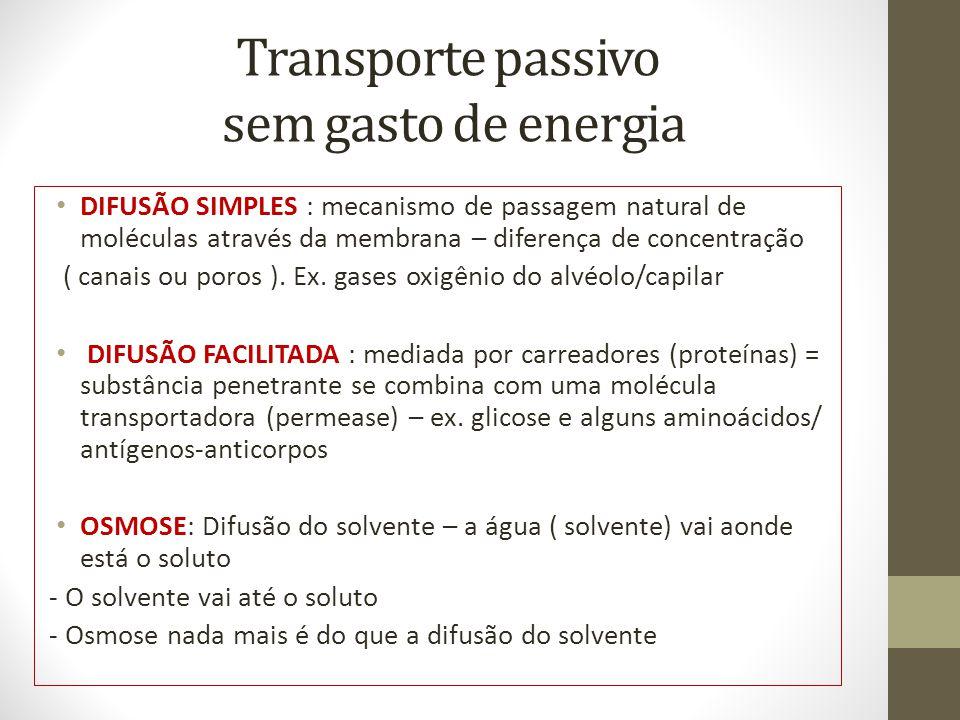 Transporte passivo sem gasto de energia DIFUSÃO SIMPLES : mecanismo de passagem natural de moléculas através da membrana – diferença de concentração ( canais ou poros ).