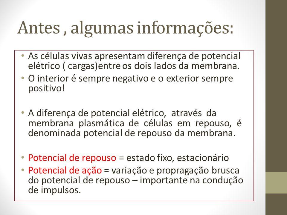 Antes, algumas informações: As células vivas apresentam diferença de potencial elétrico ( cargas)entre os dois lados da membrana.