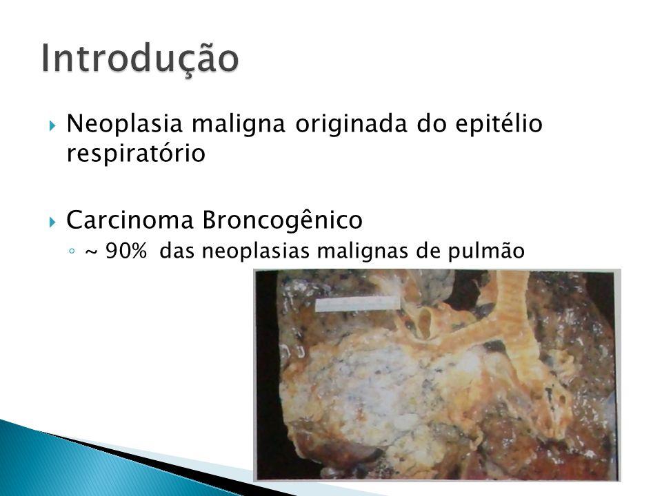 Neoplasia maligna originada do epitélio respiratório Carcinoma Broncogênico ~ 90% das neoplasias malignas de pulmão