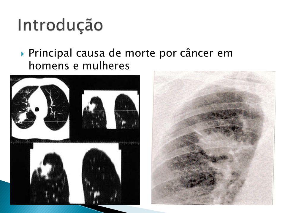 Principal causa de morte por câncer em homens e mulheres