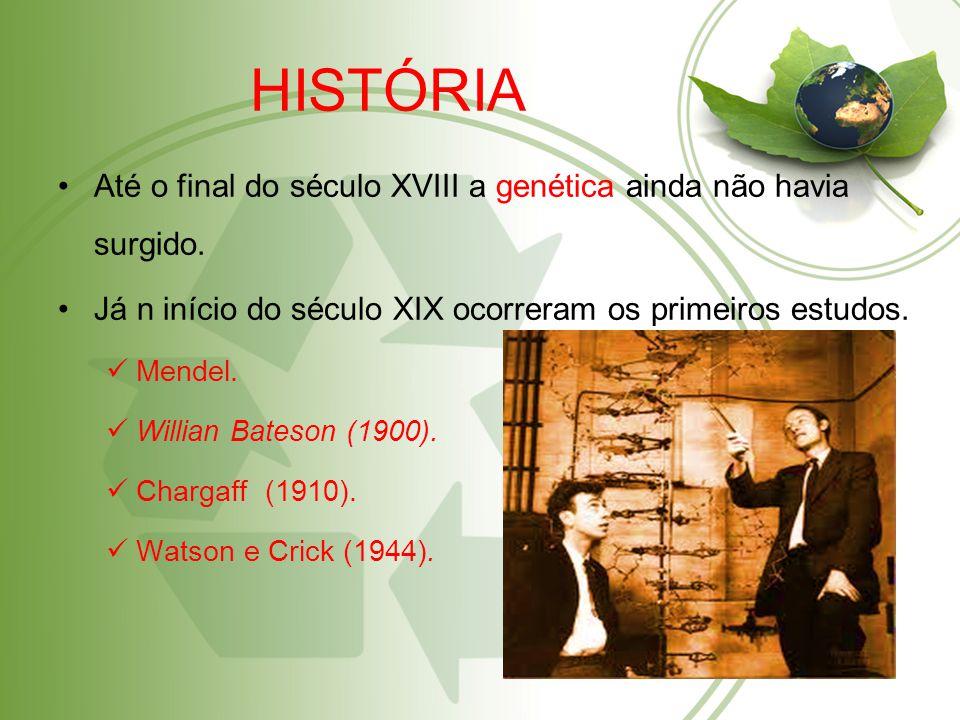 HISTÓRIA Até o final do século XVIII a genética ainda não havia surgido.