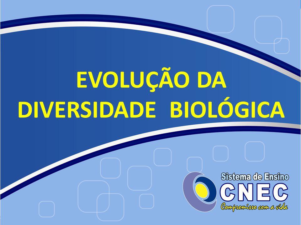 EVOLUÇÃO DA DIVERSIDADE BIOLÓGICA