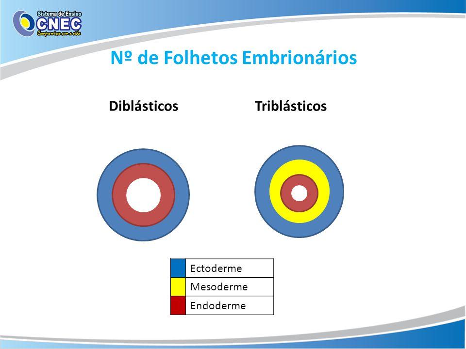 Nº de Folhetos Embrionários Ectoderme Mesoderme Endoderme Diblásticos Triblásticos