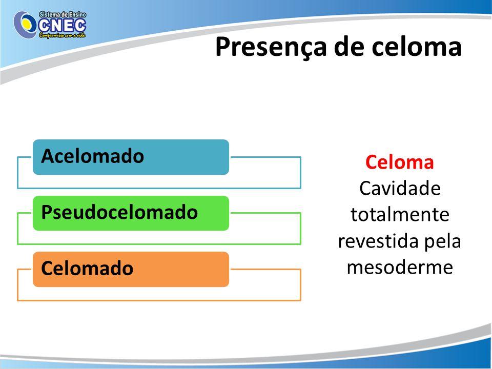 Presença de celoma Acelomado PseudocelomadoCelomado Celoma Cavidade totalmente revestida pela mesoderme