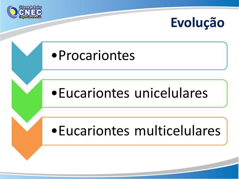 Evolução ProcariontesEucariontes unicelularesEucariontes multicelulares