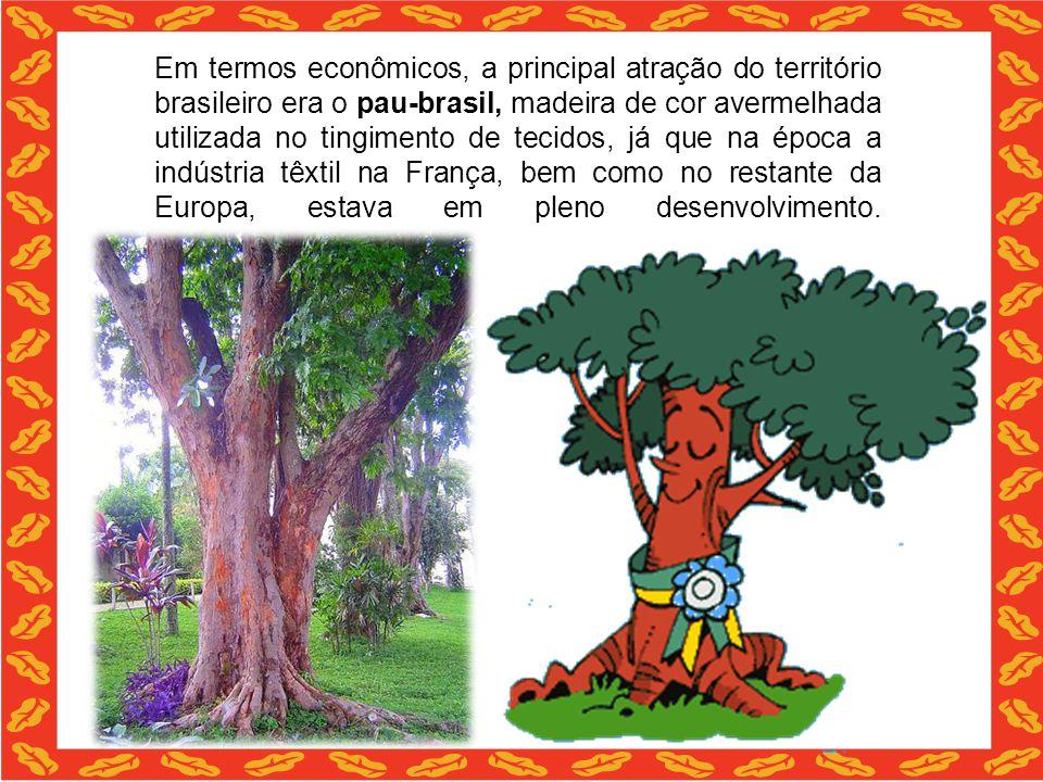 Em termos econômicos, a principal atração do território brasileiro era o pau-brasil, madeira de cor avermelhada utilizada no tingimento de tecidos, já