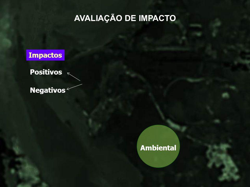 AVALIAÇÃO DE IMPACTO Ambiental Impactos Positivos Negativos