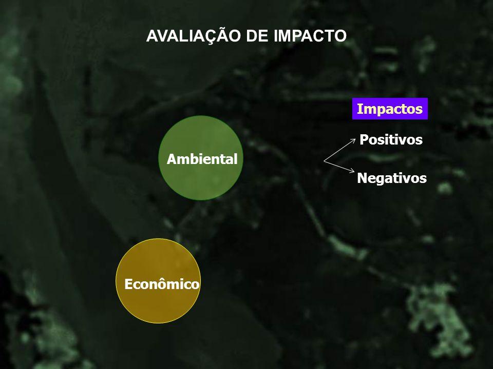 Econômico Ambiental Impactos Positivos Negativos AVALIAÇÃO DE IMPACTO