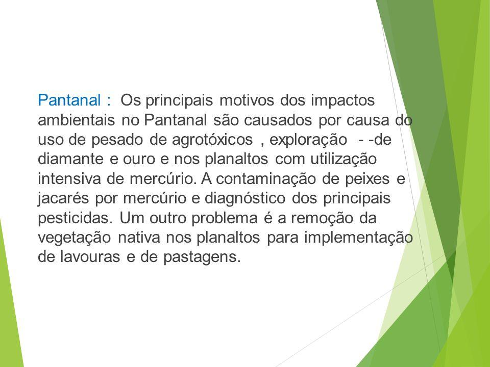 Cerrado Pantanal https://www.google.com.br/s earch?q=impactos+ambientais+ no+pantanal+e+no+cerrado&so urce=lnms&tbm=isch&sa=X&ei =NZMoU4C6JY37kQfzrID4