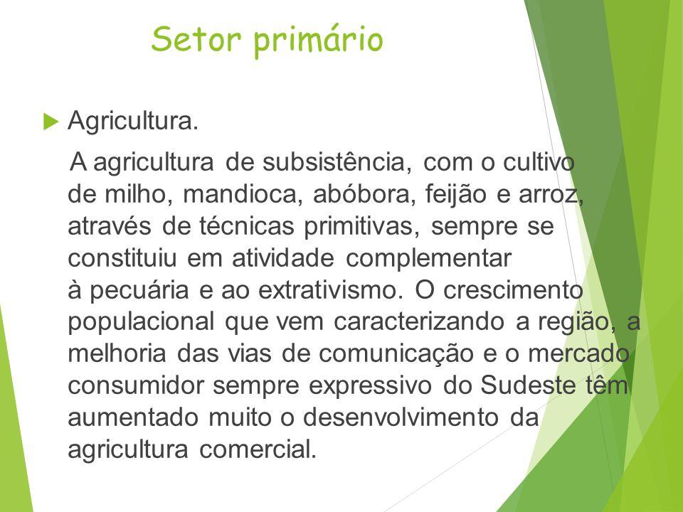Centro-Oeste Crescimento econômico http://www.suapesquisa.com/geografia/regiao_centro_oeste.htm