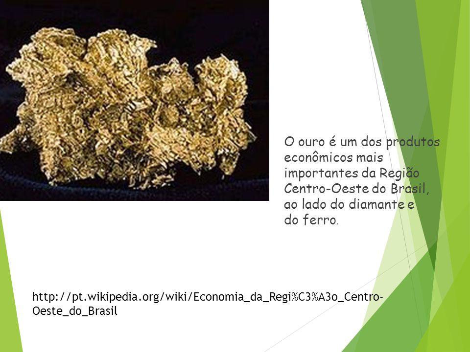 Extrativismo Extrativismo mineral As riquezas minerais da região centro - oeste são ainda mal conhecidas, mas mesmo assim a região se projeta como pos