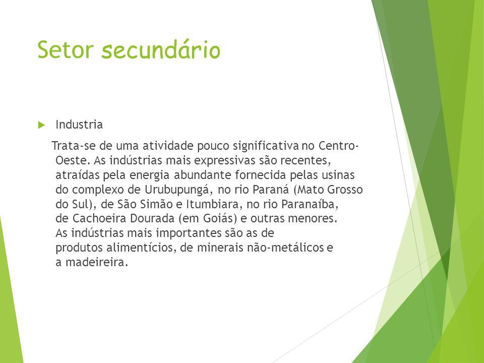 O jacaré é uma das vítimas da caça predatória. http://pt.wikipedia.org/wiki/Economia_da_Regi%C3%A3o_Centro- Oeste_do_Brasil