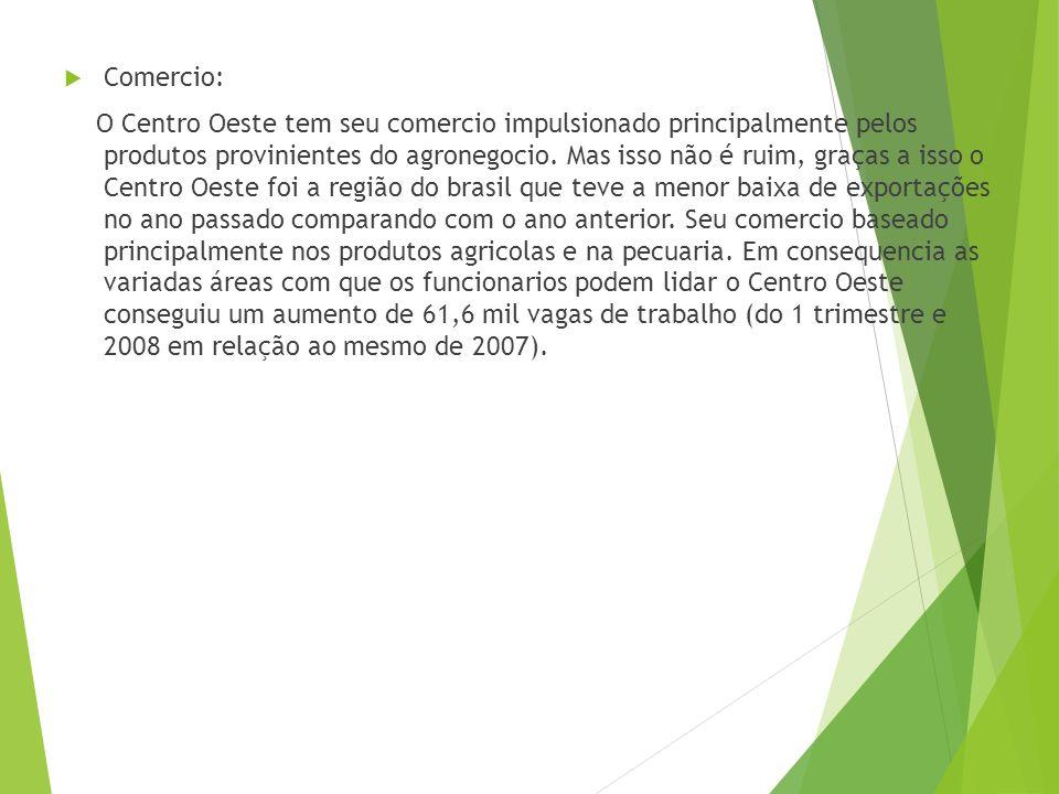 Setor terciário Transportes Possui estradas pouco desenvolvidas, com exerção daquelas que ligam capitais e a malha rodoviaria de Goiás que é a segunda