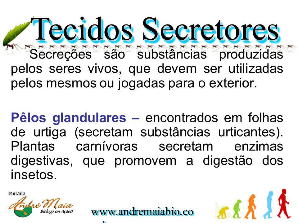 Secreções são substâncias produzidas pelos seres vivos, que devem ser utilizadas pelos mesmos ou jogadas para o exterior. Pêlos glandulares – encontra