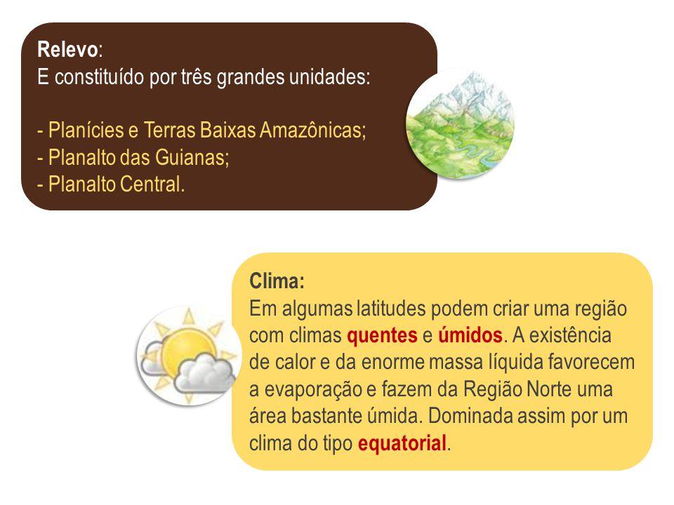 Relevo : E constituído por três grandes unidades: - Planícies e Terras Baixas Amazônicas; - Planalto das Guianas; - Planalto Central. Clima: Em alguma