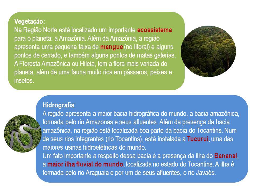 Vegetação: Na Região Norte está localizado um importante ecossistema para o planeta: a Amazônia. Além da Amazônia, a região apresenta uma pequena faix