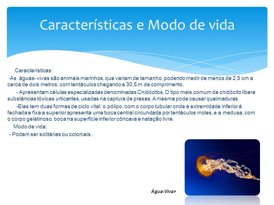 Características: - As águas- vivas são animais marinhos, que variam de tamanho, podendo medir de menos de 2,5 cm a cerca de dois metros, com tentáculo