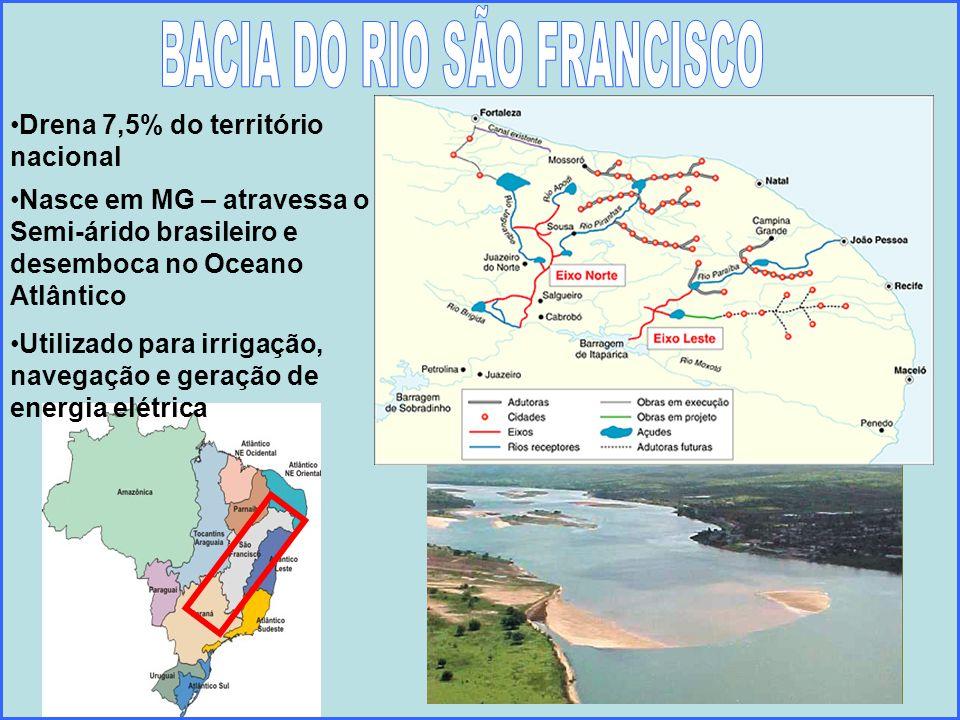 Drena 7,5% do território nacional Nasce em MG – atravessa o Semi-árido brasileiro e desemboca no Oceano Atlântico Utilizado para irrigação, navegação