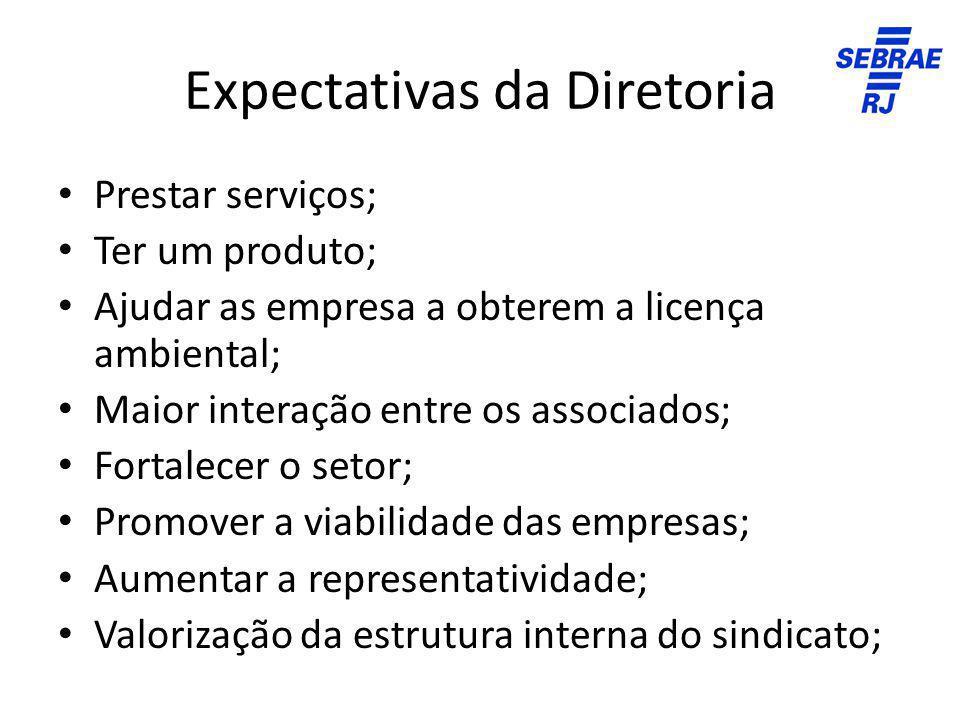 Expectativas da Diretoria Prestar serviços; Ter um produto; Ajudar as empresa a obterem a licença ambiental; Maior interação entre os associados; Fort