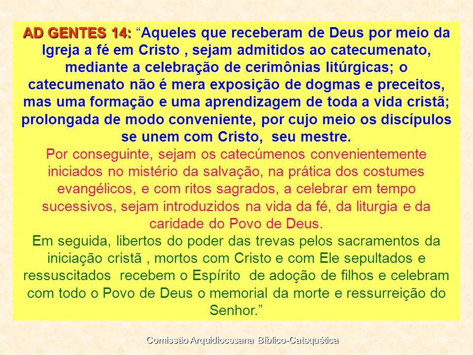 Deixando bem claro que: Catecumenato não é......supérflua introdução na fé;...