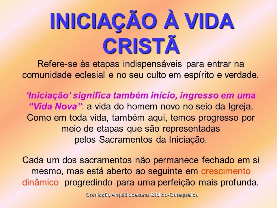 INICIAÇÃO À VIDA CRISTÃ Refere-se às etapas indispensáveis para entrar na comunidade eclesial e no seu culto em espírito e verdade.
