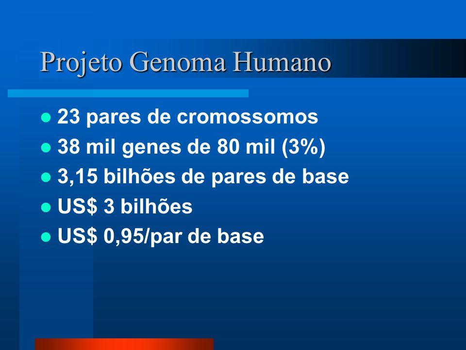 Projeto Genoma Humano 23 pares de cromossomos 38 mil genes de 80 mil (3%) 3,15 bilhões de pares de base US$ 3 bilhões US$ 0,95/par de base