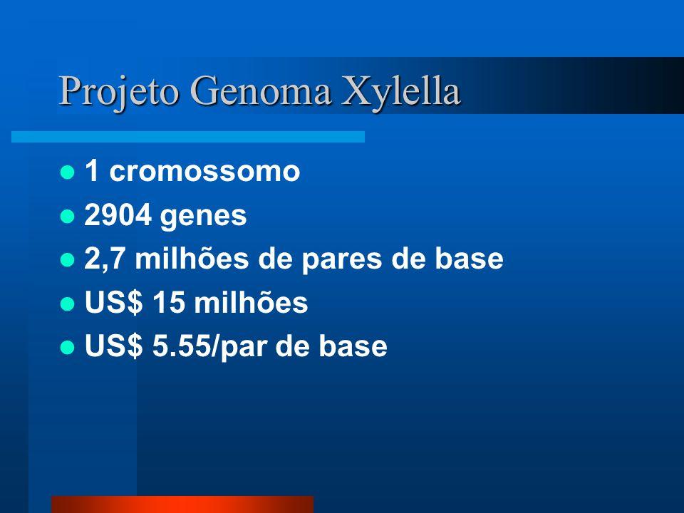 Projeto Genoma Xylella 1 cromossomo 2904 genes 2,7 milhões de pares de base US$ 15 milhões US$ 5.55/par de base