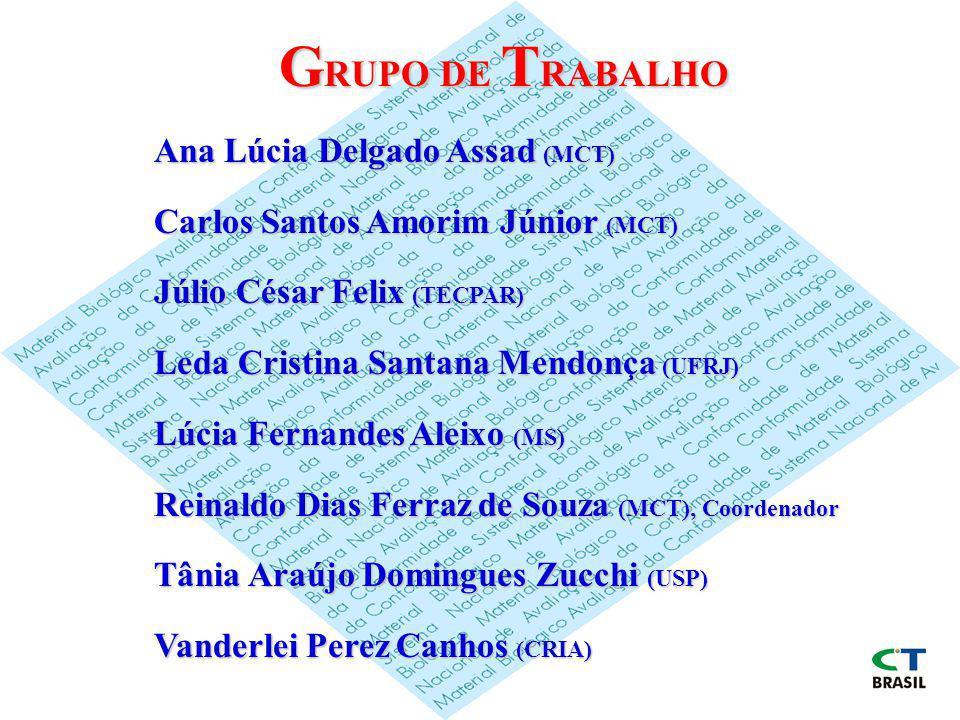 G RUPO DE T RABALHO Ana Lúcia Delgado Assad (MCT) Carlos Santos Amorim Júnior (MCT) Júlio César Felix (TECPAR) Leda Cristina Santana Mendonça (UFRJ) L