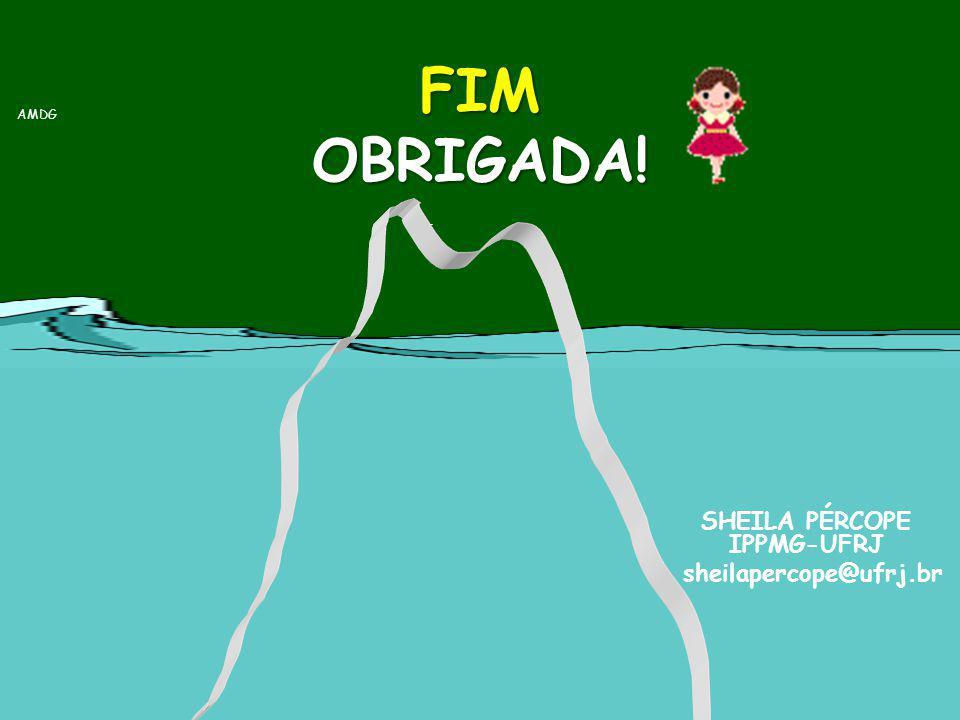 FIM OBRIGADA! SHEILA PÉRCOPE IPPMG-UFRJ sheilapercope@ufrj.br AMDG
