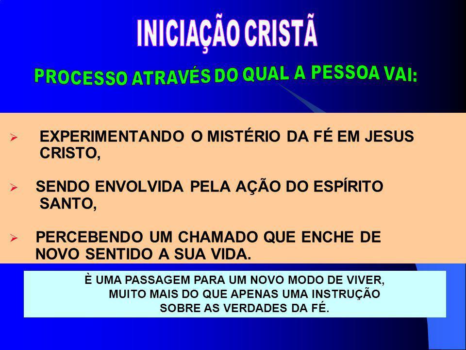 EXPERIMENTANDO O MISTÉRIO DA FÉ EM JESUS CRISTO, SENDO ENVOLVIDA PELA AÇÃO DO ESPÍRITO SANTO, PERCEBENDO UM CHAMADO QUE ENCHE DE NOVO SENTIDO A SUA VI