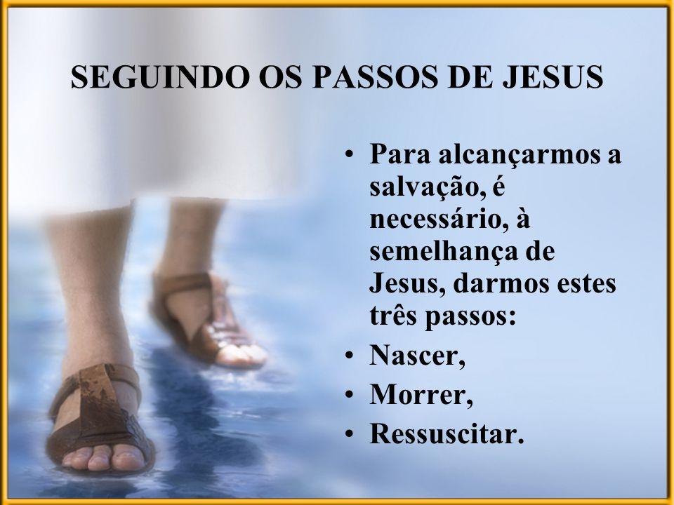 SEGUINDO OS PASSOS DE JESUS Para alcançarmos a salvação, é necessário, à semelhança de Jesus, darmos estes três passos: Nascer, Morrer, Ressuscitar.
