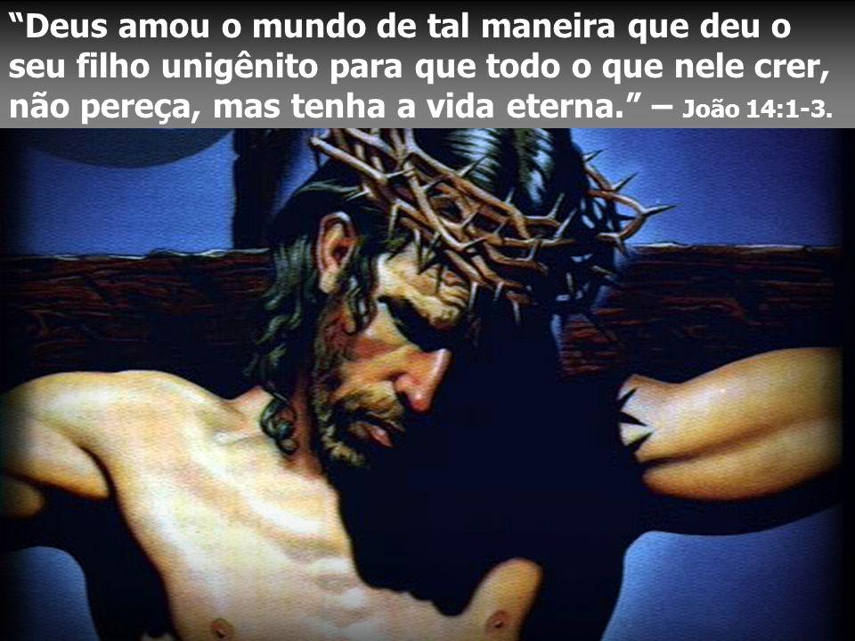 Deus amou o mundo de tal maneira que deu o seu filho unigênito para que todo o que nele crer, não pereça, mas tenha a vida eterna. – João 14:1-3.