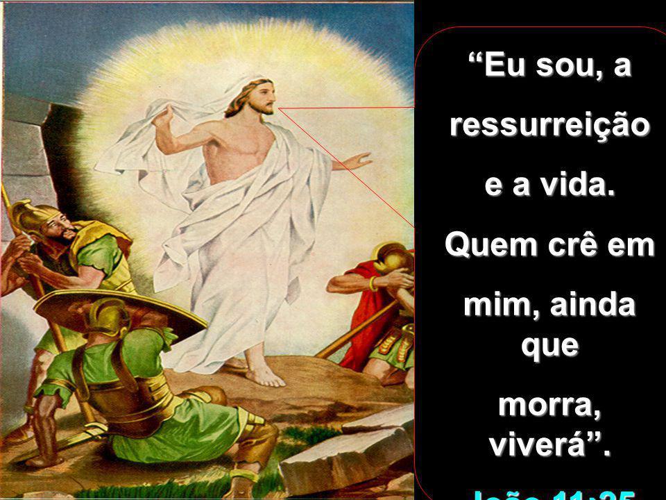 ...abriram-se os sepulcros e muitos corpos de santos, que dormiam, ressuscitaram; e saindo dos sepulcros depois da ressurreição de Jesus, entraram na