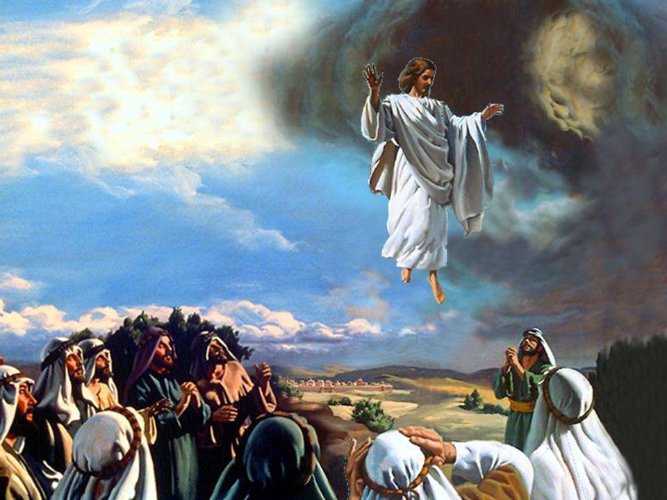 Eu sou, a ressurreição e a vida. Quem crê em mim, ainda que morra, viverá. João 11:25