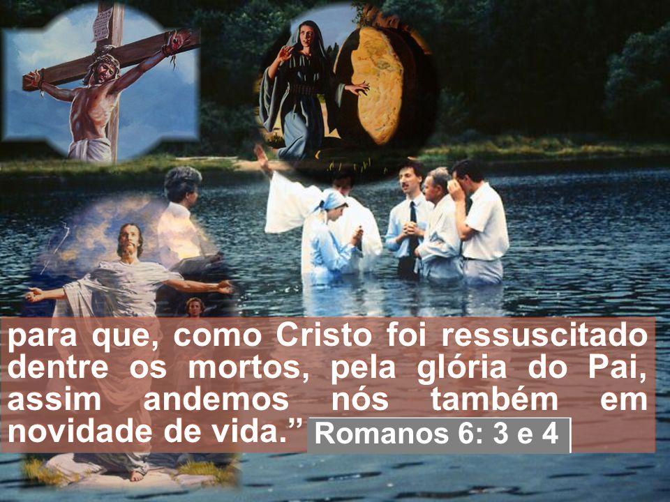 Ou não sabeis que todos quantos fomos batizados em Jesus Cristo fomos batizados na sua morte? De sorte que fomos sepultados com ele pelo batismo na mo