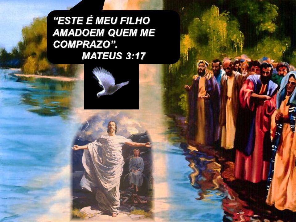 para que, como Cristo foi ressuscitado dentre os mortos, pela glória do Pai, assim andemos nós também em novidade de vida. Romanos 6: 3 e 4