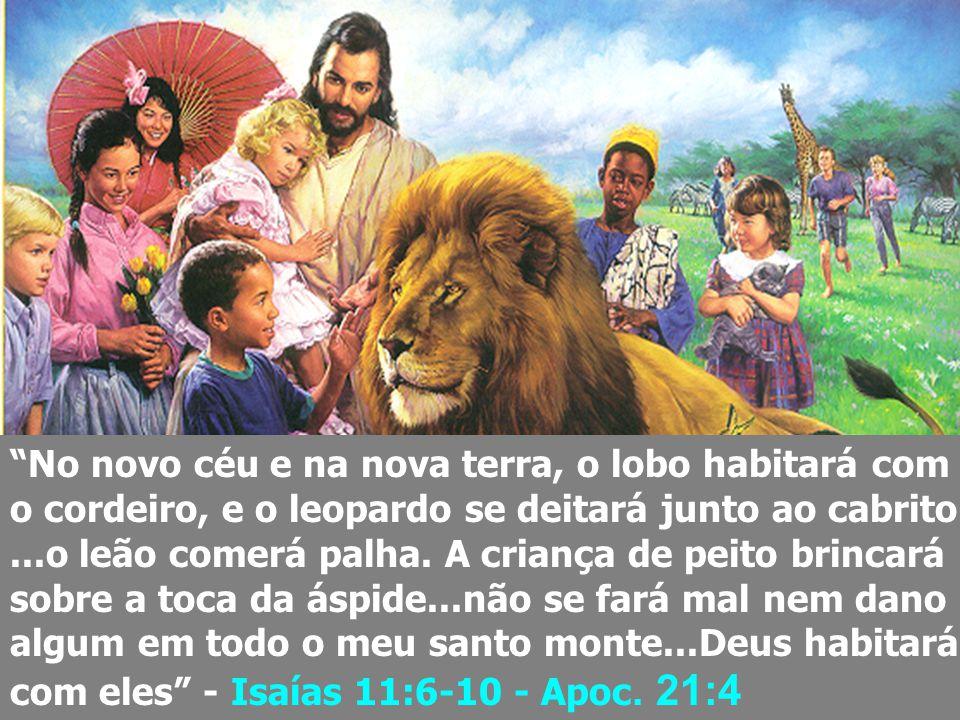 Deixai vir a mim os pequeninos, não os embaraceis, porque dos tais é o reino de Deus. Em verdade vos digo: Quem não receber o reino de Deus como uma c