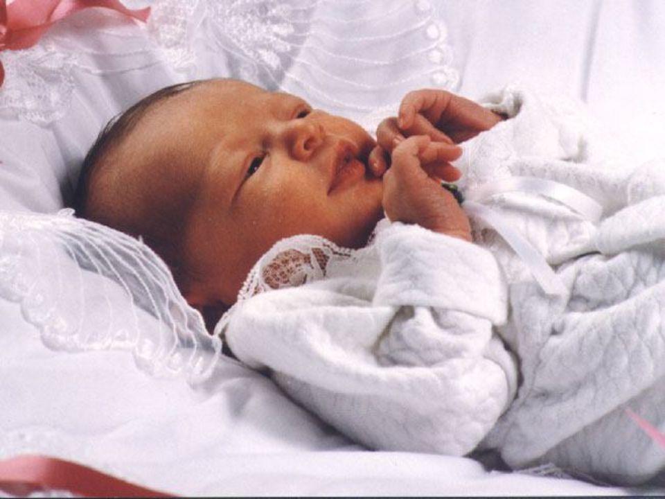 E aconteceu que, estando eles ali, se cumpriram os dias em que ela havia de dar à luz. E deu à luz a seu filho primogênito, e envolveu-o em panos, e d