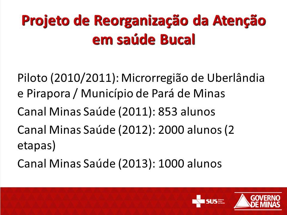 Projeto de Reorganização da Atenção em saúde Bucal Piloto (2010/2011): Piloto (2010/2011): Microrregião de Uberlândia e Pirapora / Município de Pará d