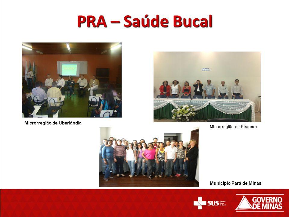 PRA – Saúde Bucal Microrregião de Uberlândia Microrregião de Pirapora Município Pará de Minas