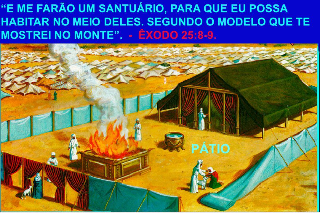 Ora, a primeira aliança também tinha preceitos de serviço sagrado, e o seu santuário terrestre. Com efeito, foi preparado o tabernáculo, cuja parte an