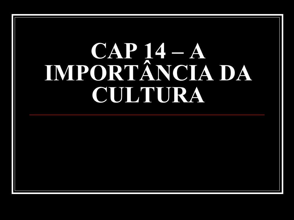 CAP 14 – A IMPORTÂNCIA DA CULTURA