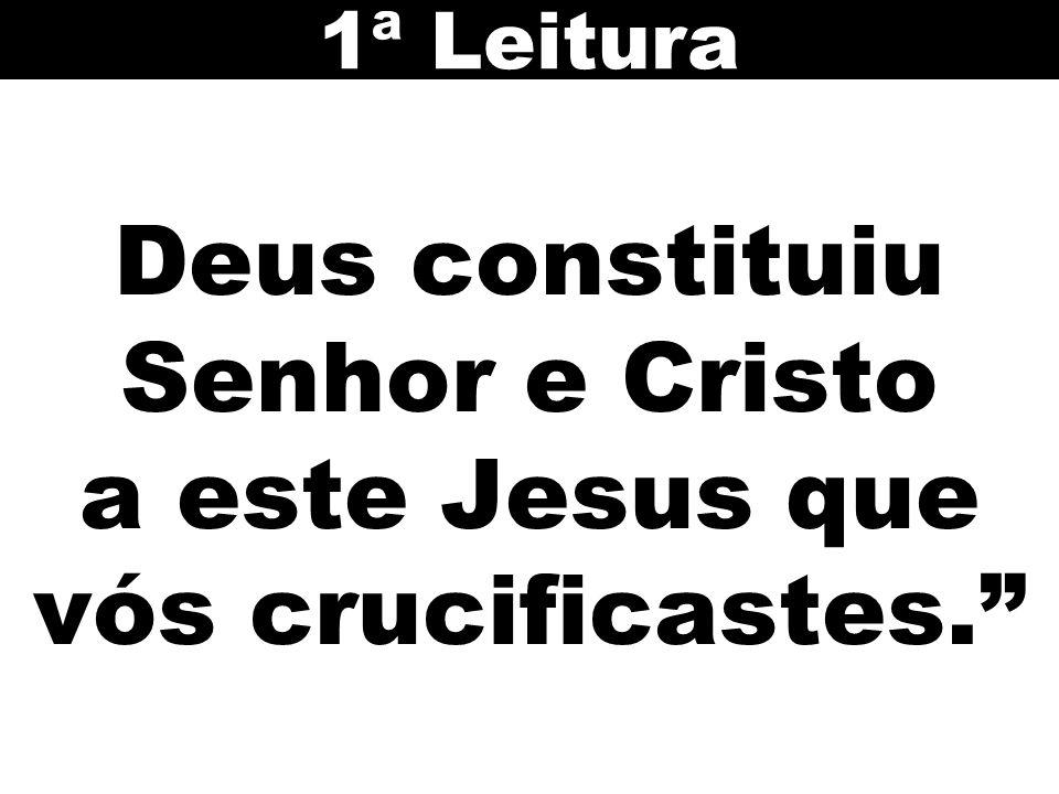 Deus constituiu Senhor e Cristo a este Jesus que vós crucificastes. 1ª Leitura