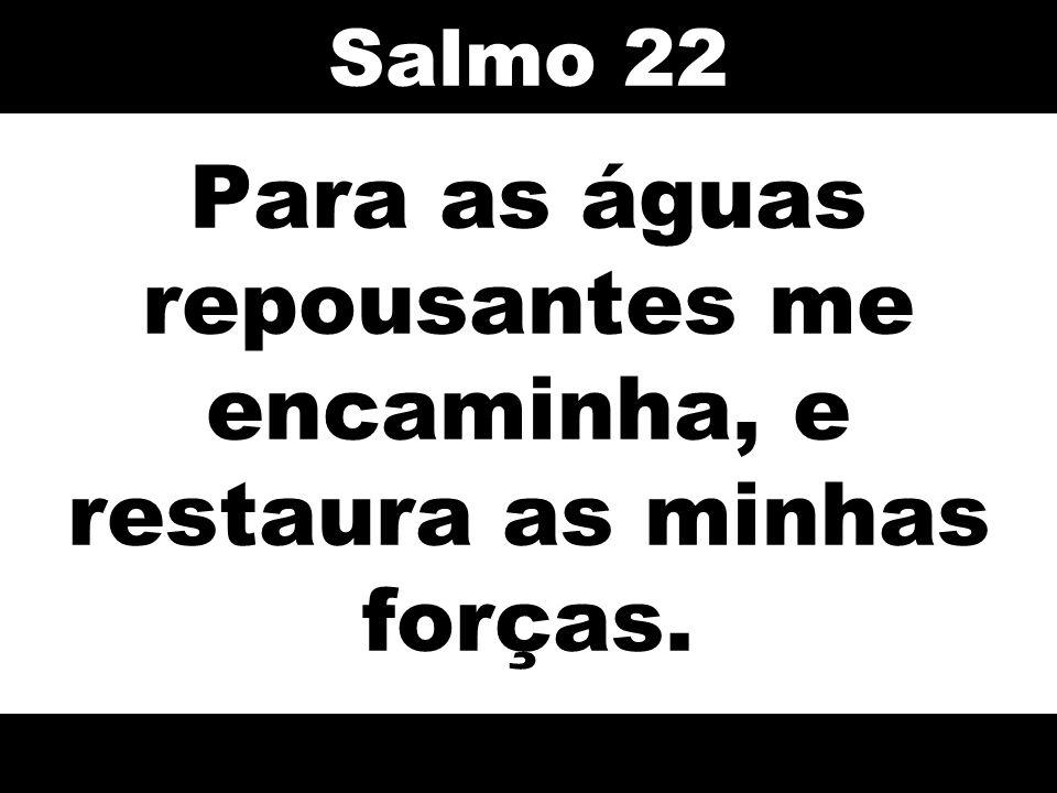 Para as águas repousantes me encaminha, e restaura as minhas forças. Salmo 22