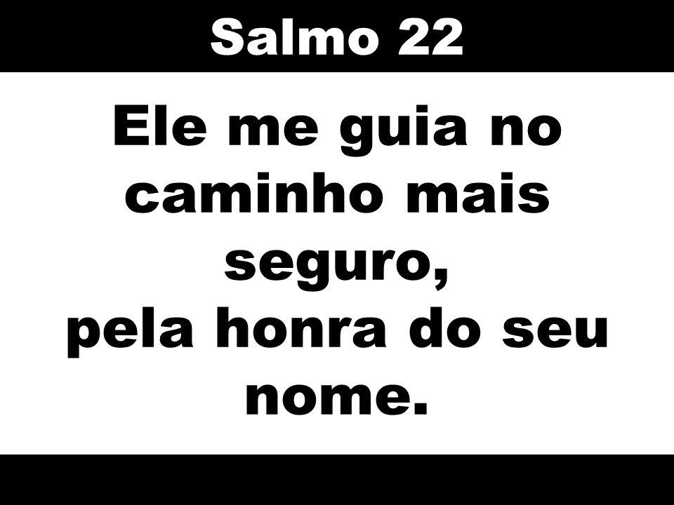 Ele me guia no caminho mais seguro, pela honra do seu nome. Salmo 22