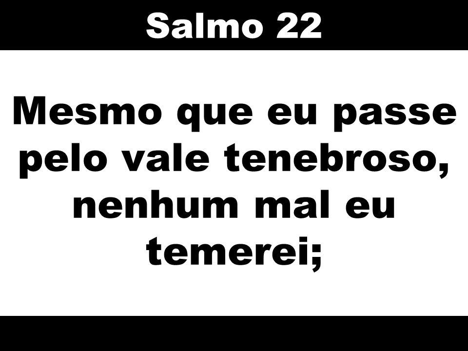 Mesmo que eu passe pelo vale tenebroso, nenhum mal eu temerei; Salmo 22