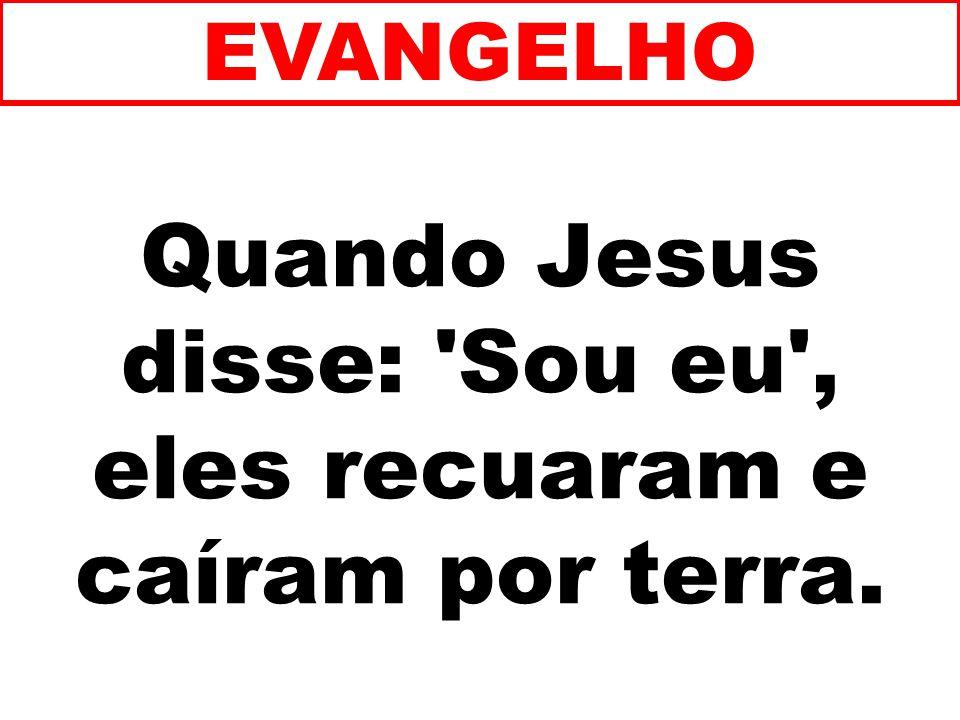 Quando Jesus disse: Sou eu , eles recuaram e caíram por terra. EVANGELHO