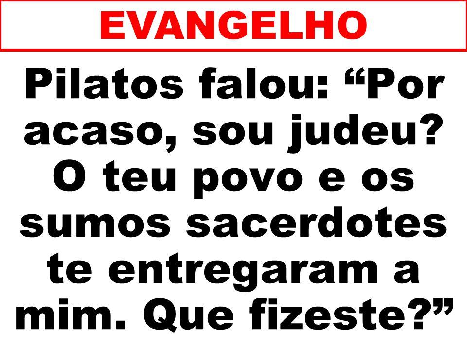 Pilatos falou: Por acaso, sou judeu.O teu povo e os sumos sacerdotes te entregaram a mim.